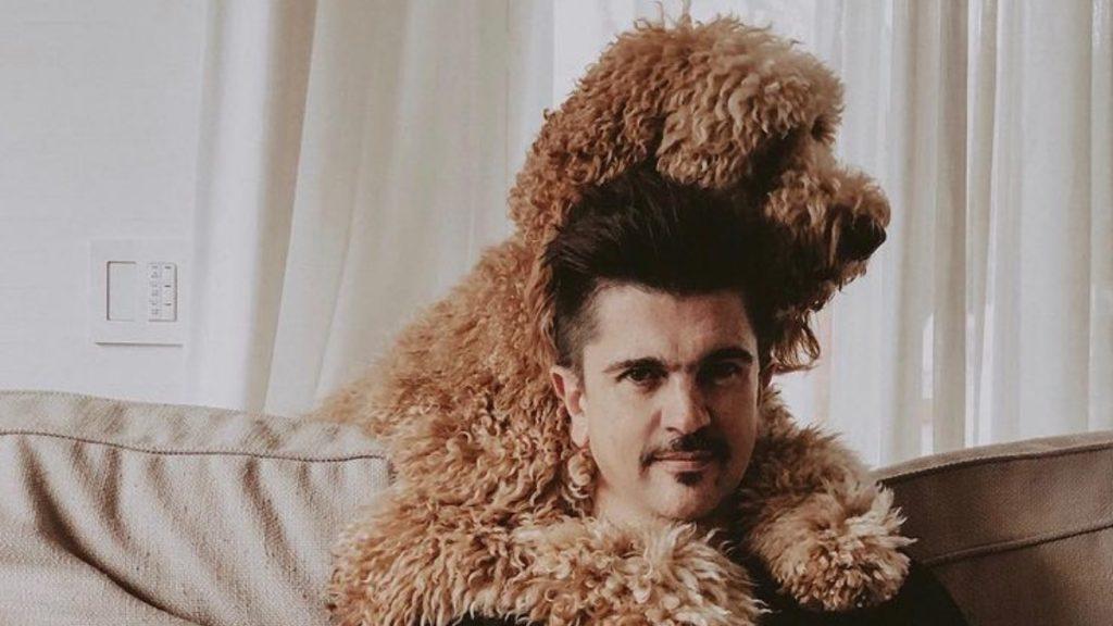 El Perro De Juanes Está Causando Furor En Redes Sociales