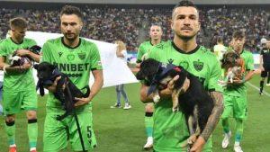 Futbolistas Rumanos Perros